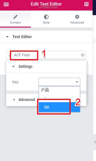 elementor与acf自定义产品字段教程-3