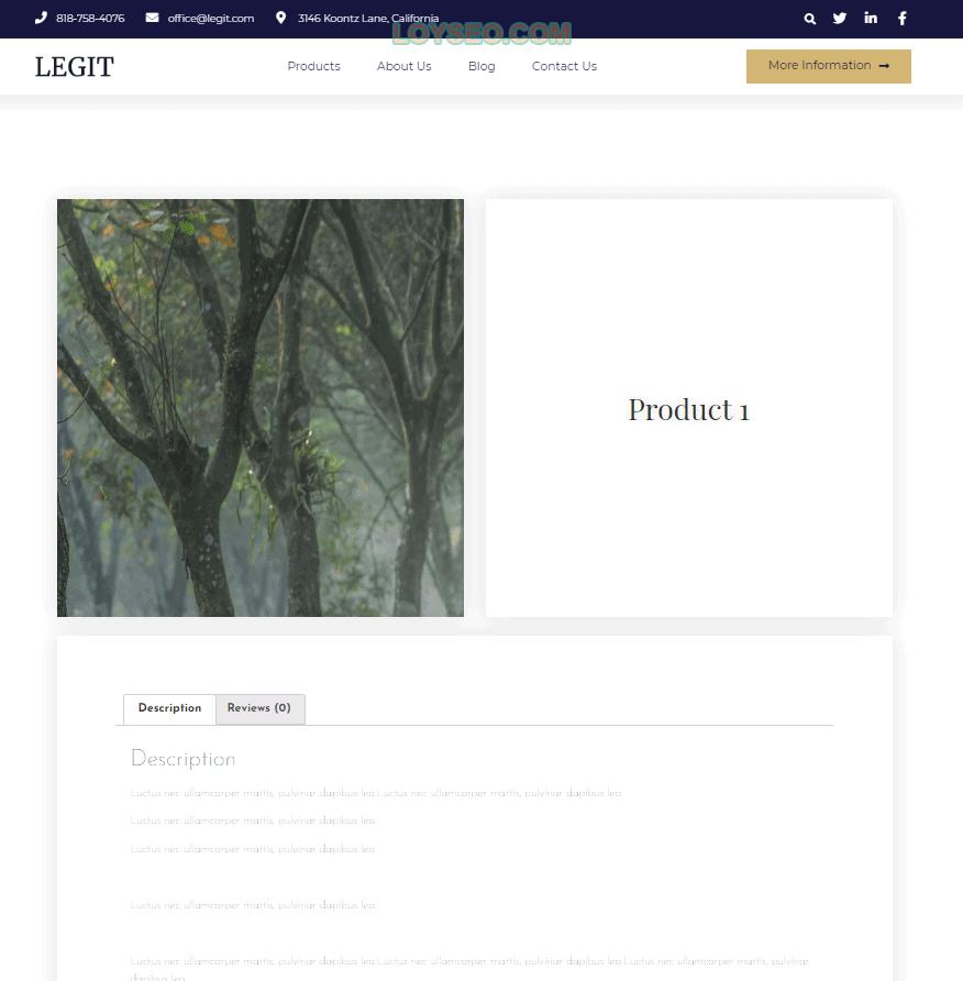 elementor元素编辑教程 12 - 怎么建网站:零基础用Elementor制作一个外贸网站