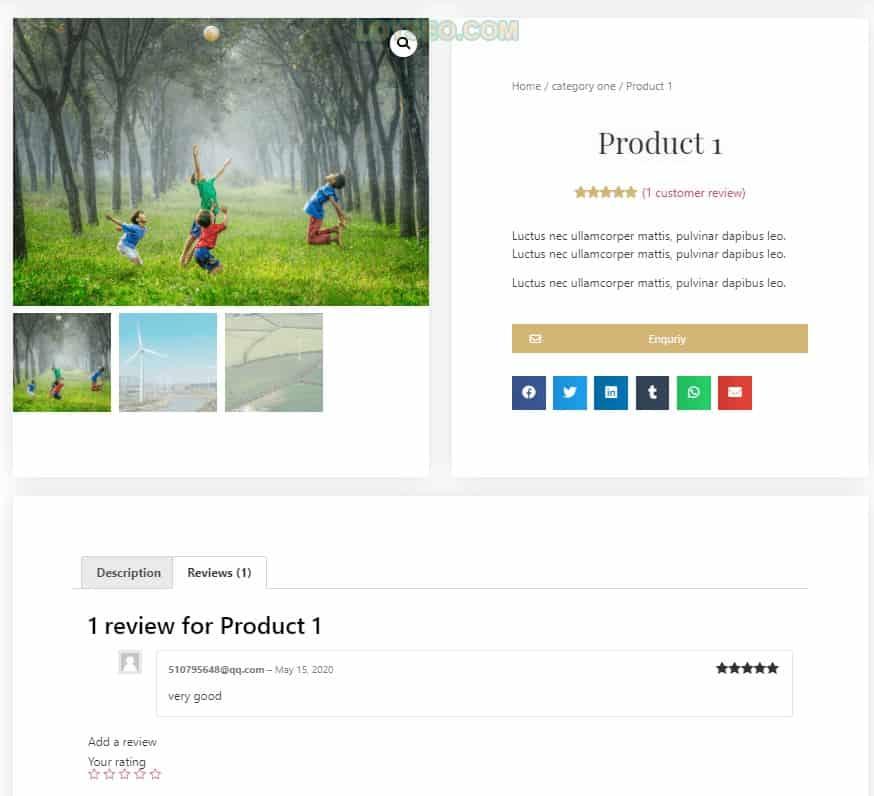 elementor product 3 - 怎么建网站:零基础用Elementor制作一个外贸网站