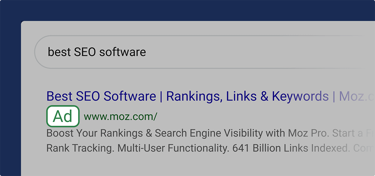 paid search results ads - 什么是SERP?